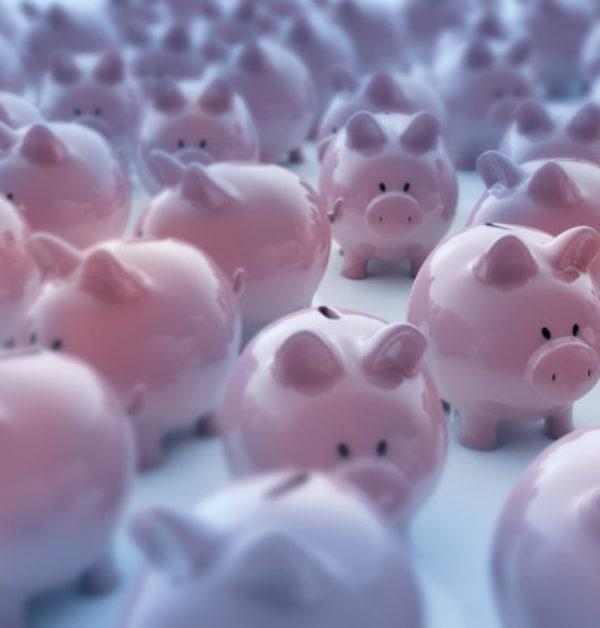 Piggies 4